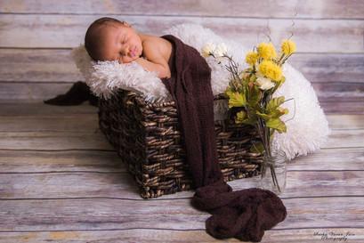 newborn photography chennai baby cute pose portrait brown basket