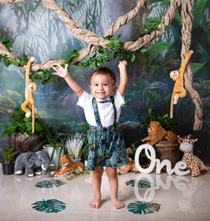 boy cake smash session ideas jungle animals monkey lion elephant deer bear theme jungle kids photography one year old onesie beautiful first birthday boy baby