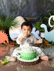 boy cake smash session ideas dino theme dinosaur jungle kids photography one year old onesie beautiful first birthday boy baby