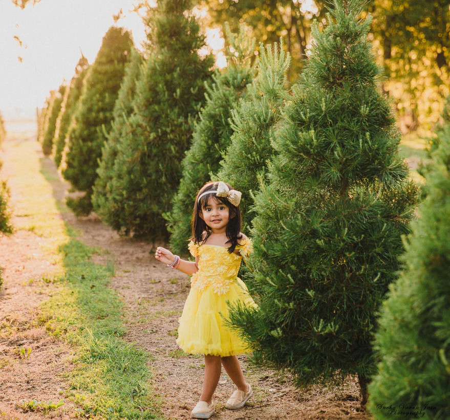 kids photography toddler birthday christmas tree sunset sunflower
