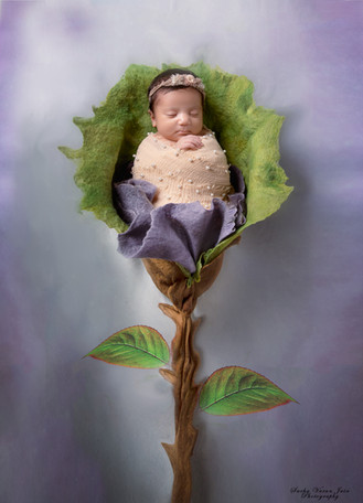 newborn photography chennai baby cute pose portrait paris theme eiffel tower pink hands on chin flower bloom green lavender rose