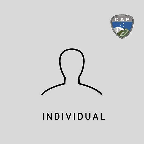Categoria Individual - Anuidade