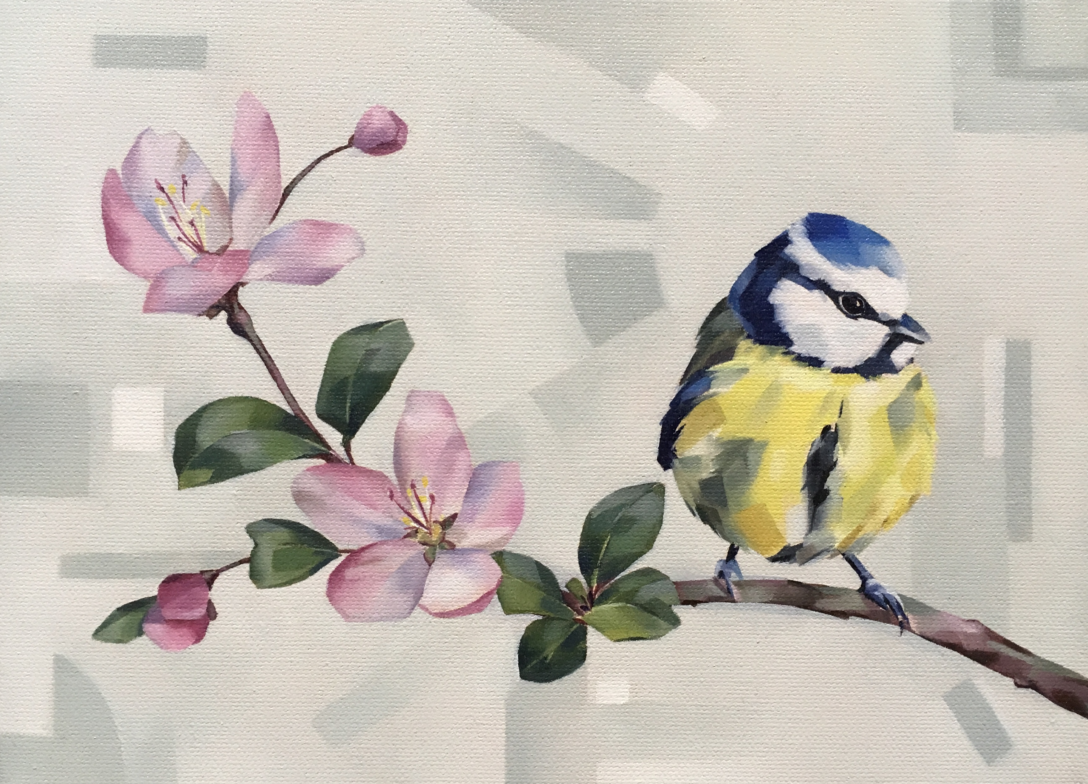 Springtime Blue Tit