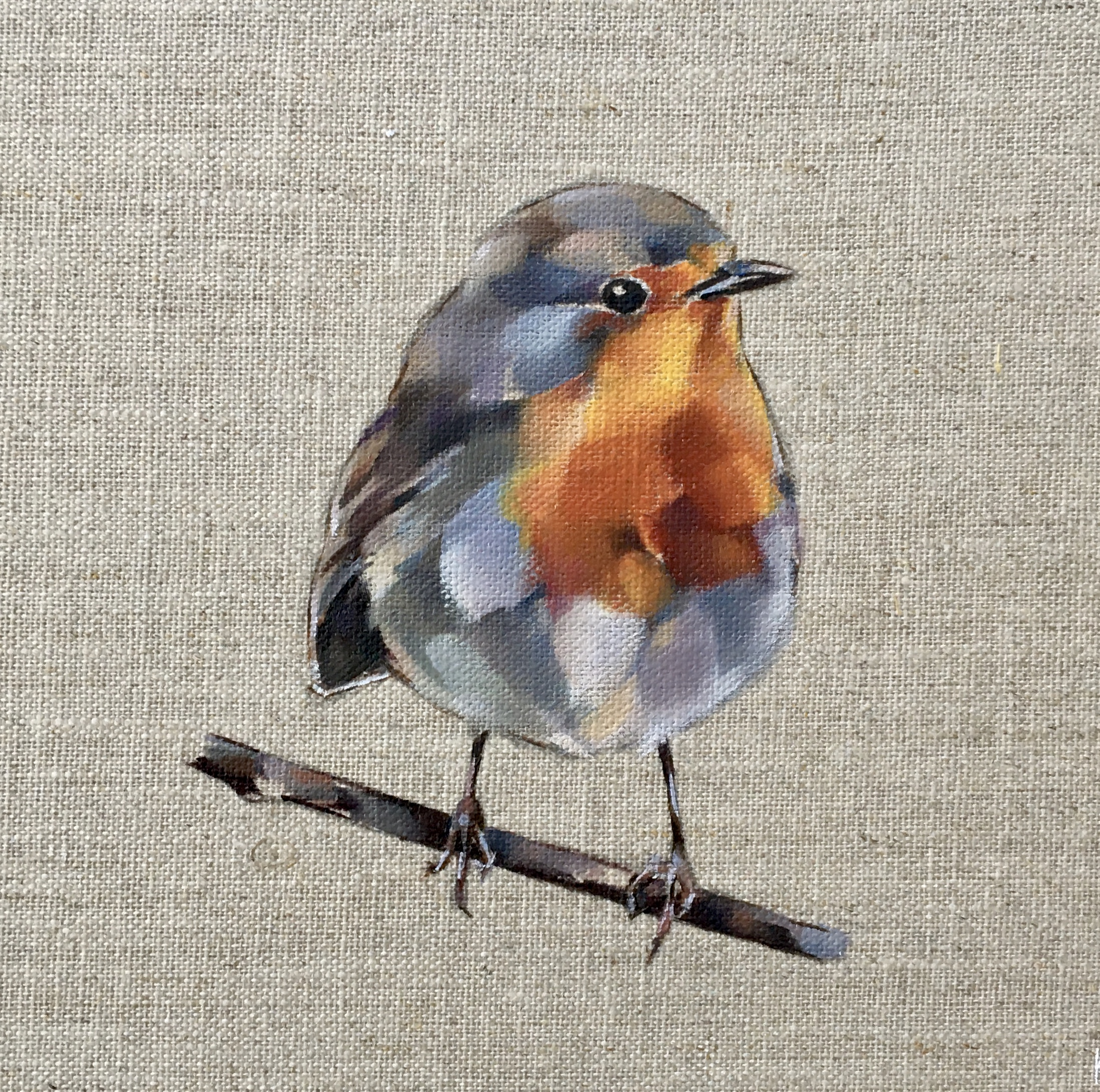 Joe Robin Redbreast
