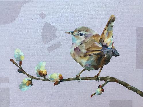 Jenny Wren print