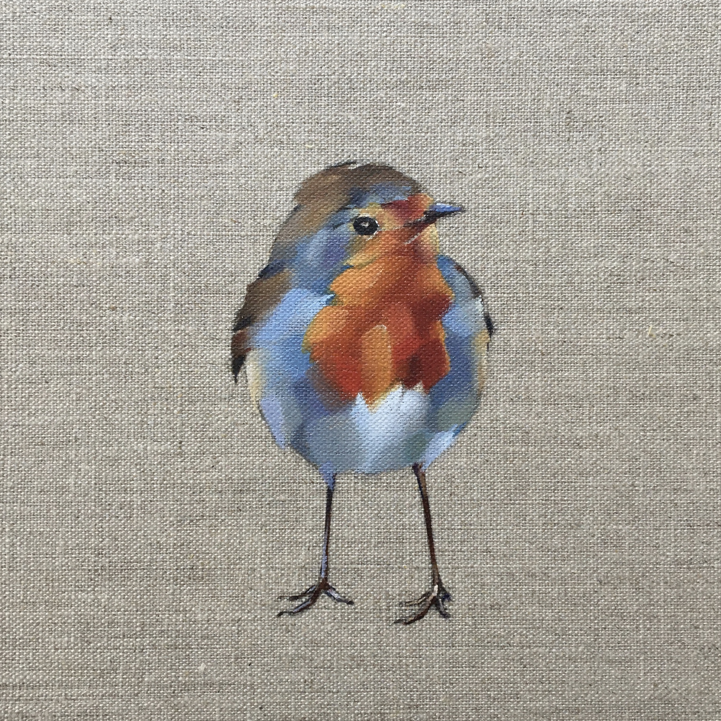 Robin Redbreast Joe