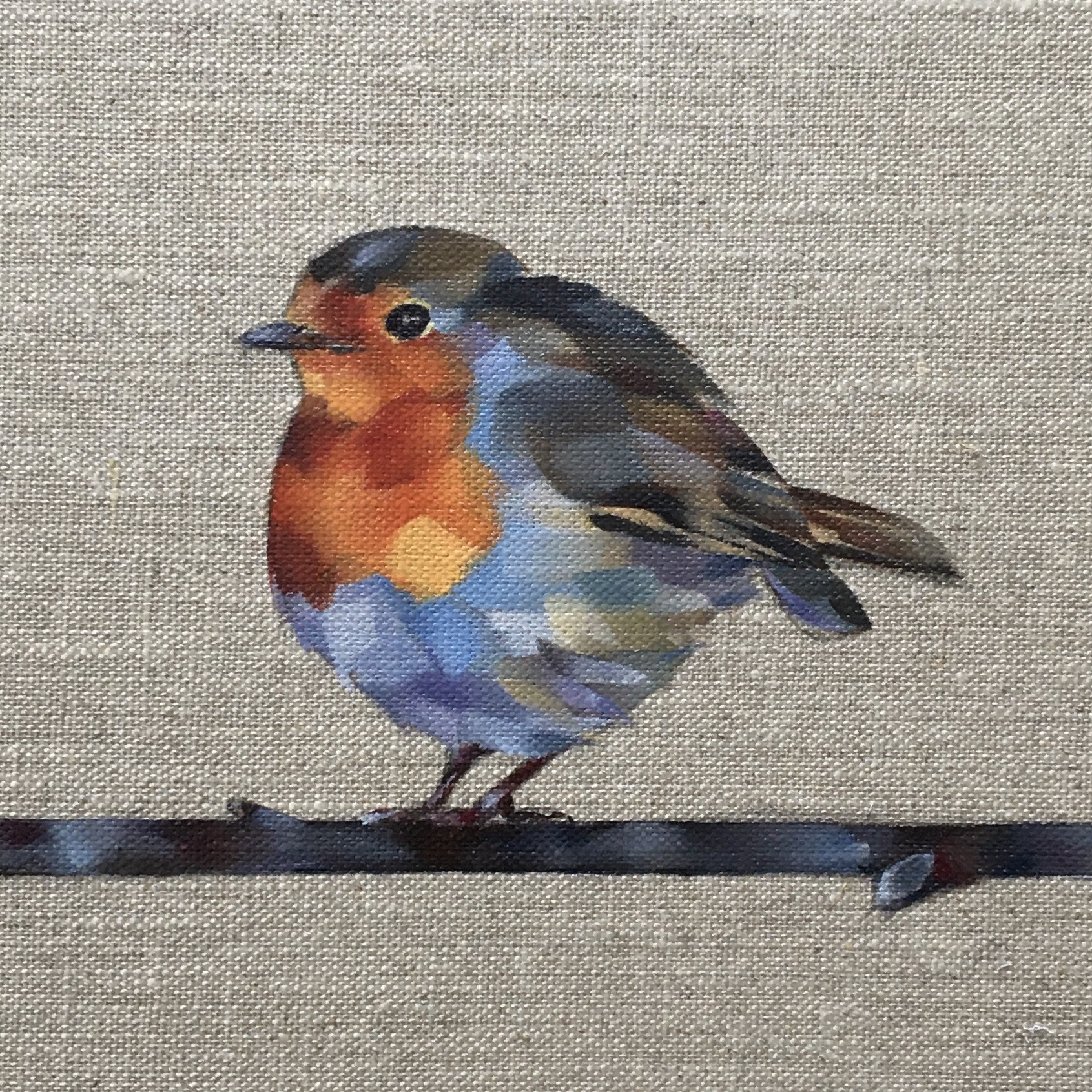 Robin Redbreast Tom