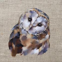 Master Barn Owl