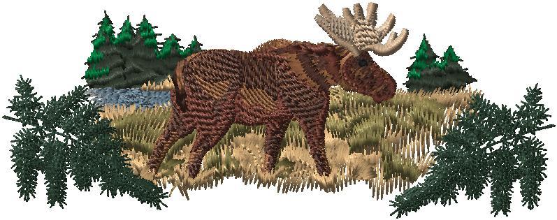 EL Moose Scene
