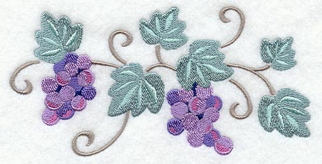 C8148 Sweet Grapes & Vines Border