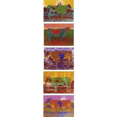 Parmiggiani, Mucche Zoogeografiche.jpg
