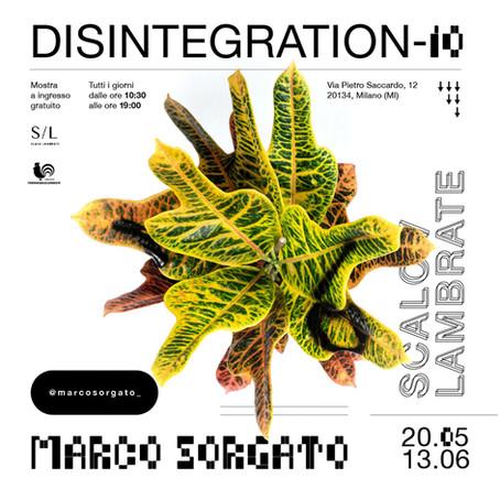 Marco Sorgato, Disintegration-IO