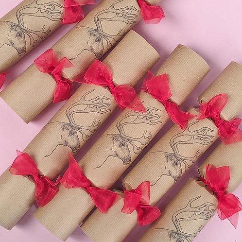 Festive Reindeer Christmas Crackers Box of Six
