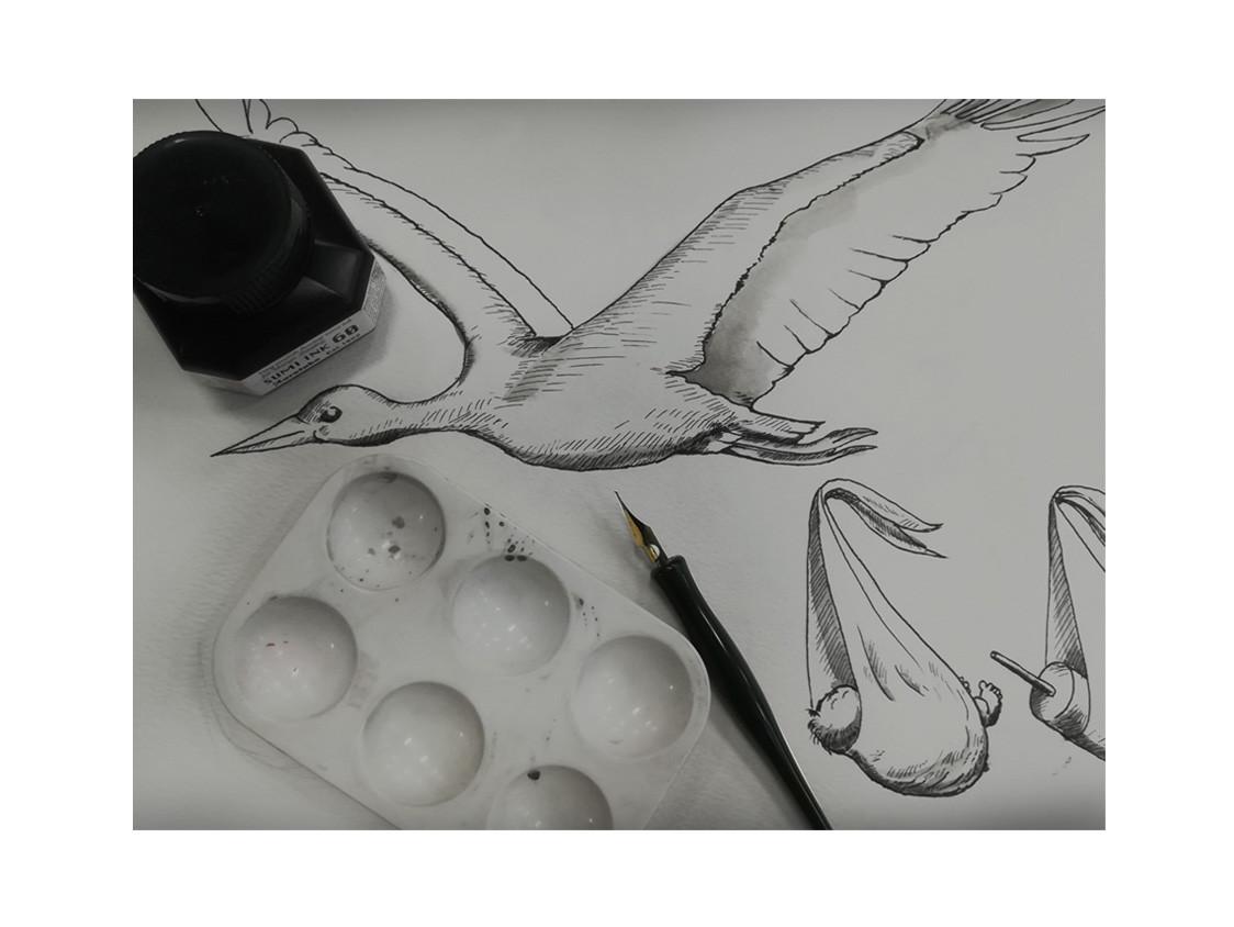 StorkP1.jpg