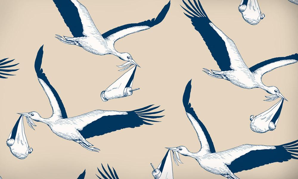 Storky02.jpg