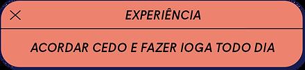 experiencia ju.png