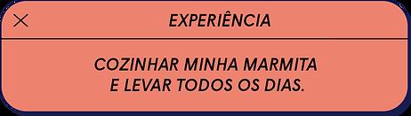 experiencia isa.png