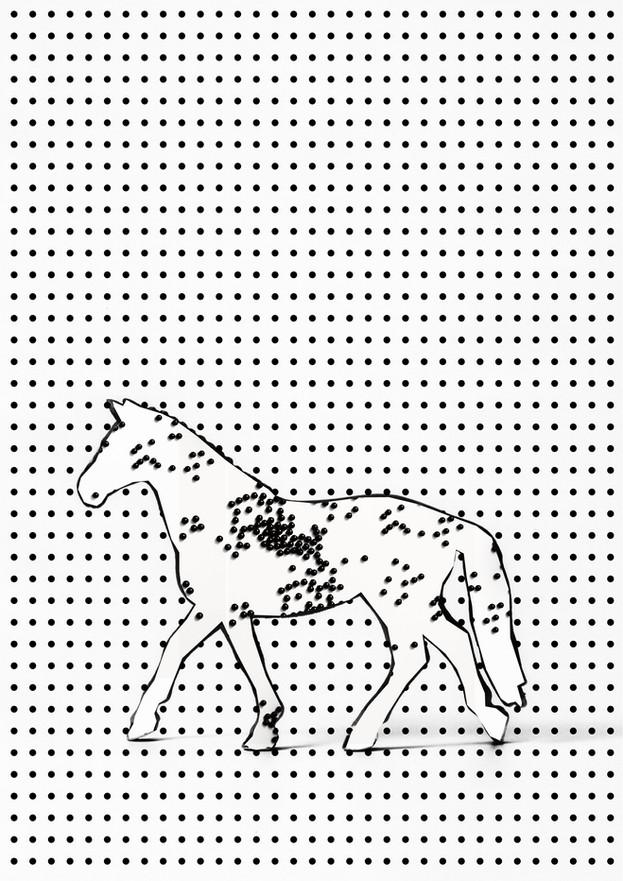 CUTUP/Horse_4