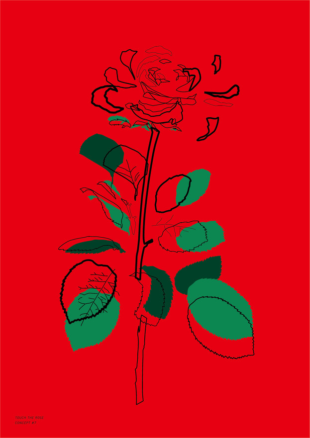 Study Of Rose_4