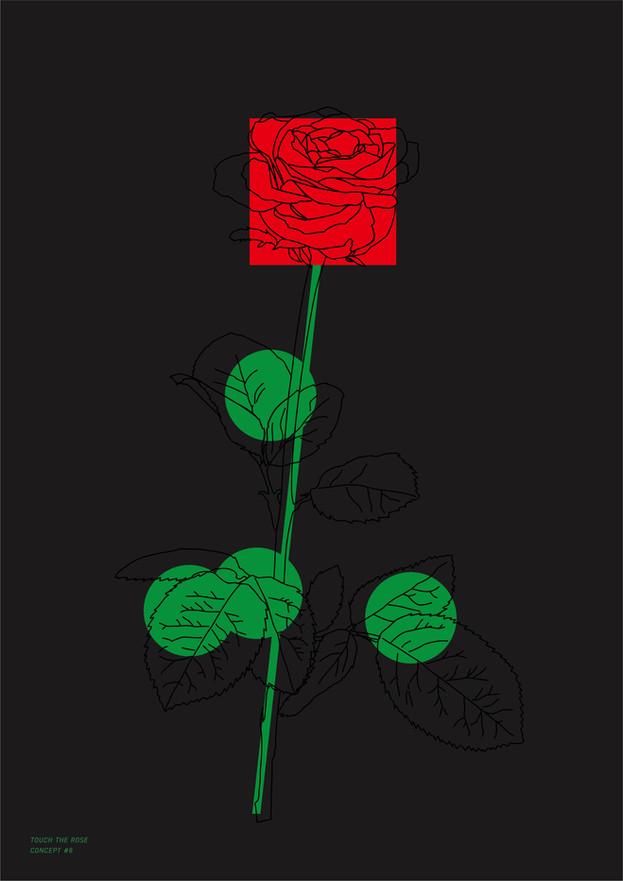 Study Of Rose_5