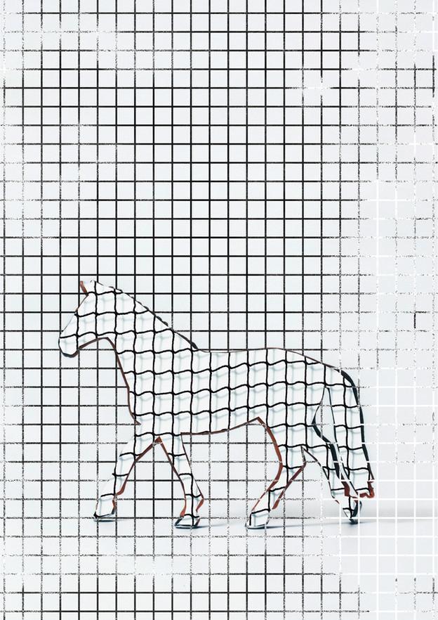 CUTUP/Horse_3