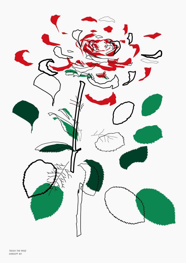 Study Of Rose_3