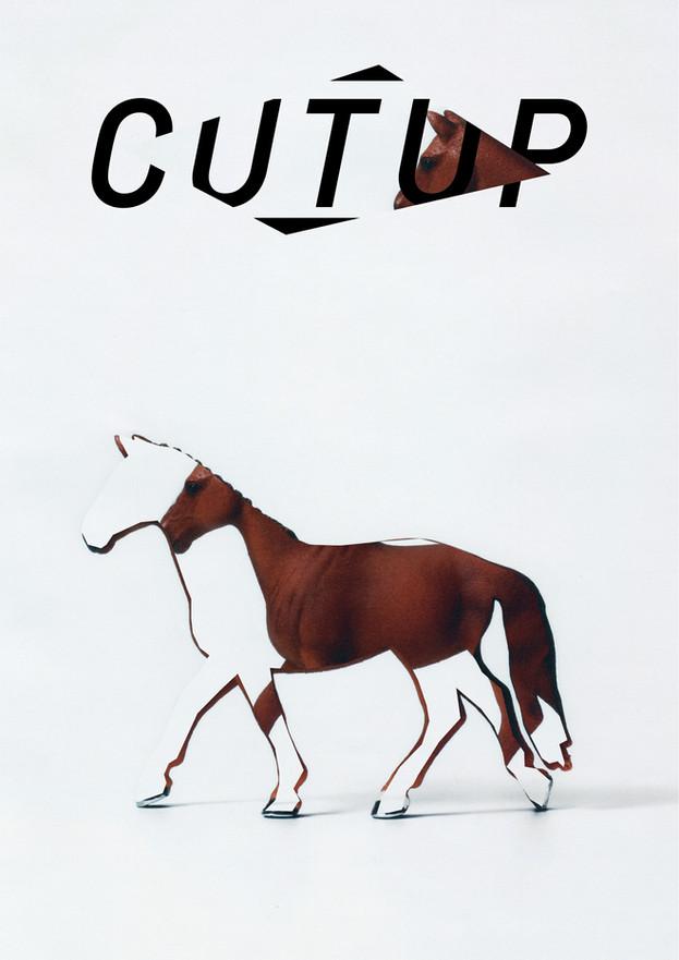 CUTUP/Horse_2