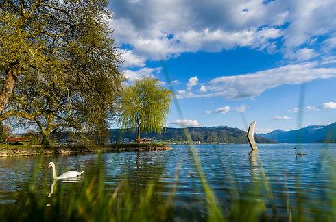 Relocation Lake Zug