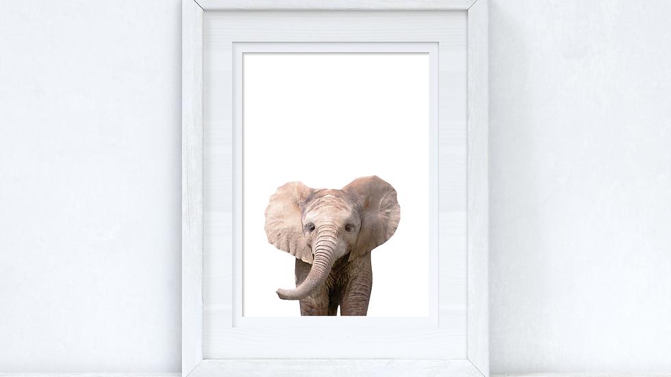 Baby Elephant Wild Animal Unisex Nursery Children's Room Wall Decor Print