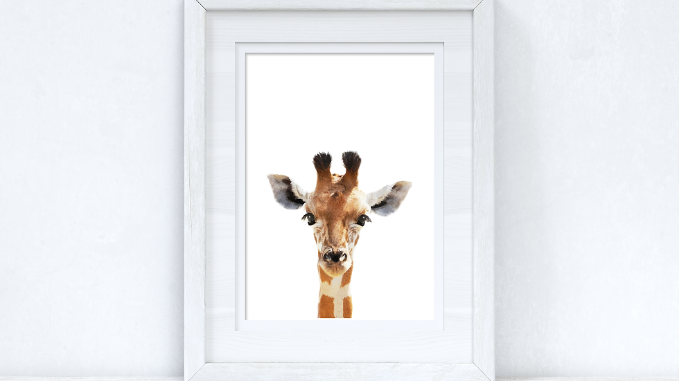 Baby Giraffe Wild Animal Unisex Nursery Children's Room Wall Decor Print