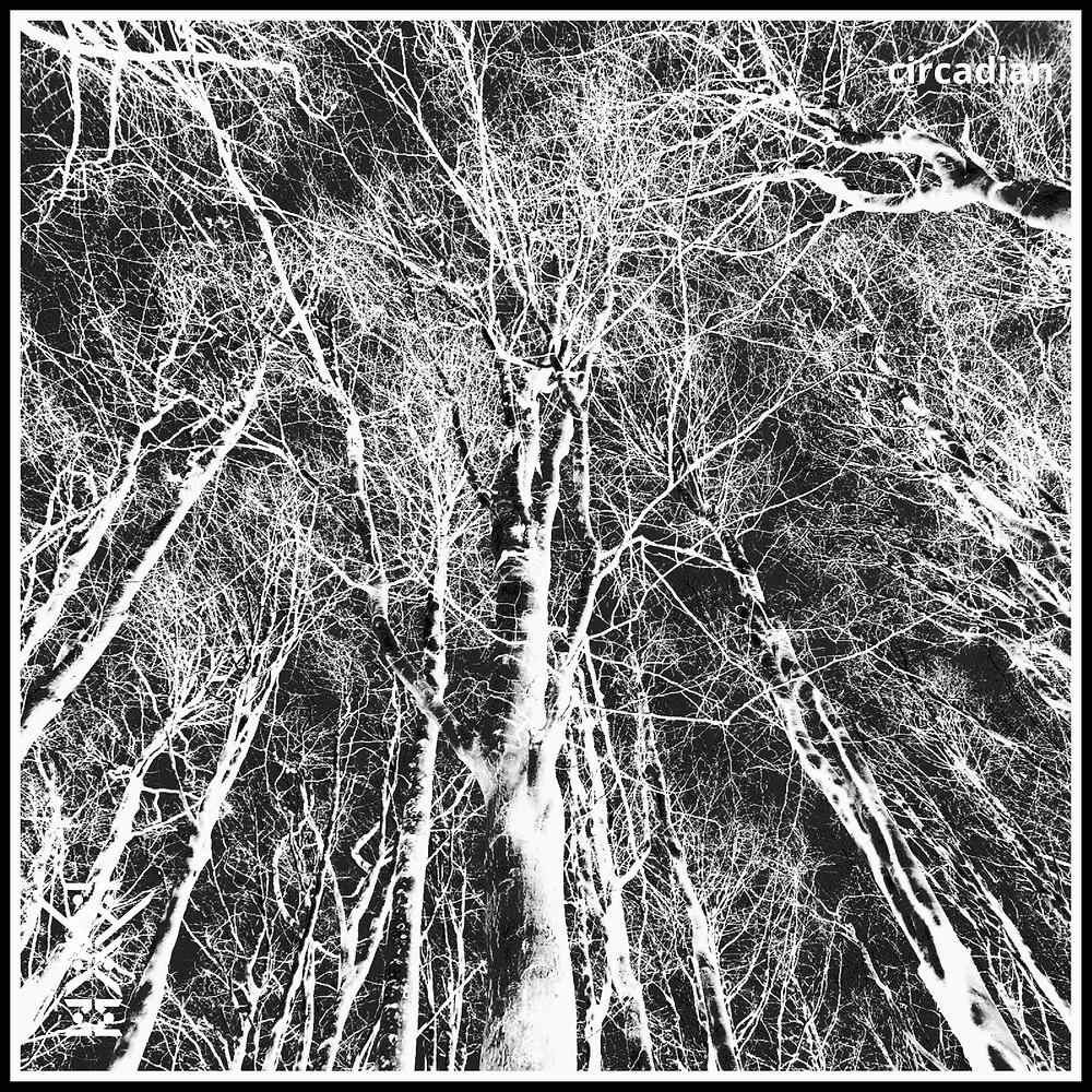 Kyam - Circadian - Unbidden Audio