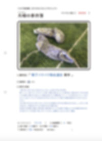 スクリーンショット 2018-08-03 0.15.08のコピー.jpg