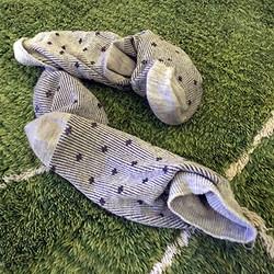 靴下バラバラ散乱遺伝事件