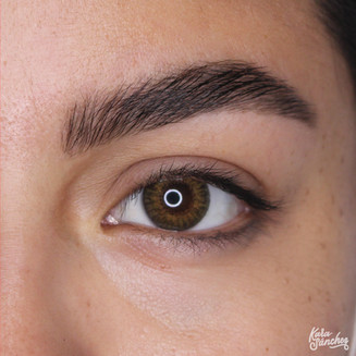 Stevie Campos brow Lam 1218 R eye.jpg