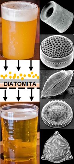 Diatomita.png