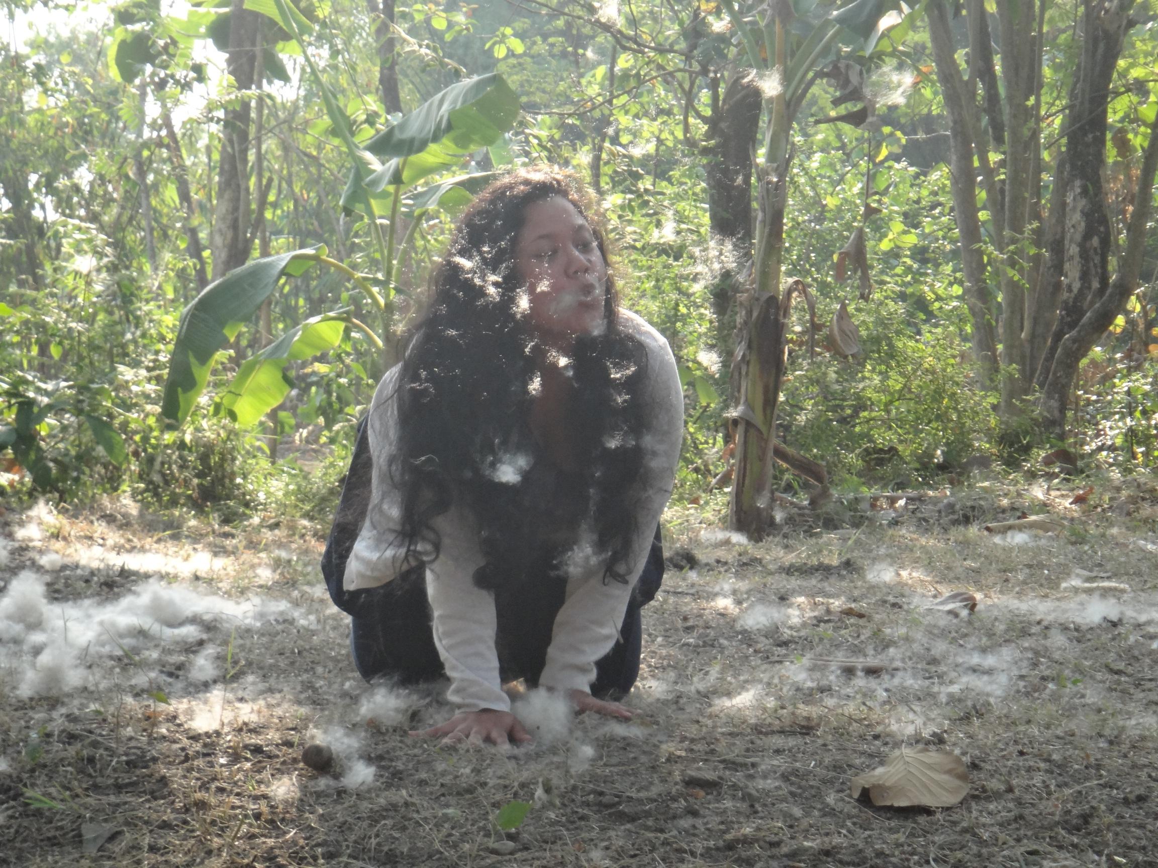 Kapok Hunting