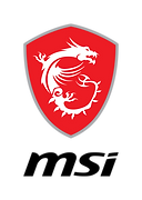 2020-msi-dragon_spirit_logo-digital_v_4c