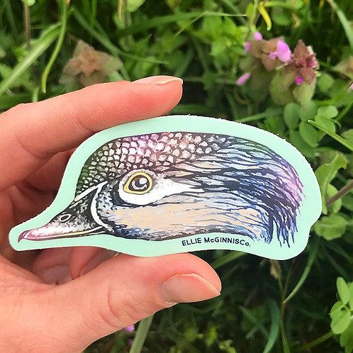 Small Wood Duck Hen Vinyl Sticker