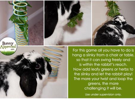 DIY Bunny Toys!