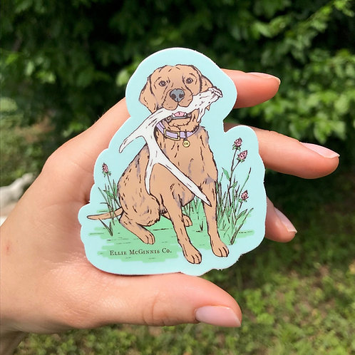Small Shed Huntint Dog on Mint