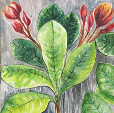 Reminiscence Seeking fragrance | Meera Curam