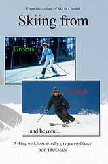 Book cover for site.jpg