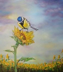 Sunflowers 30 x 30 olej na platne