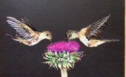 Kolibriky 50x30 soft pastel