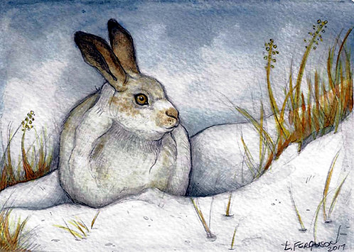 Winter Hare Lisa Ferguson Designs