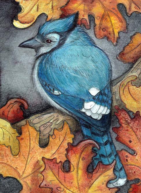 Blue Jay in the Maples Lisa Ferguson Design