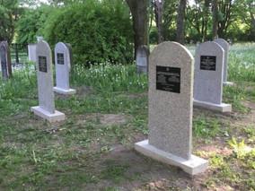 פרוייקט הקמת מצבות זיכרון בבית העלמין היהודי בחלם