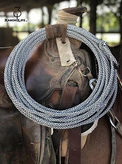 3-10 ropes.jpg