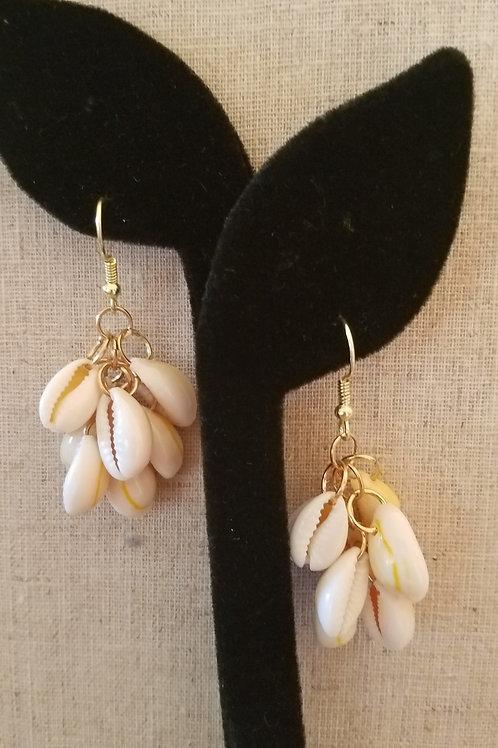 Cowrie Shell Golden Earrings