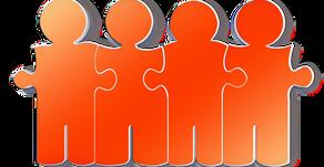 ¿Cuál es tu rol en tu equipo de trabajo?